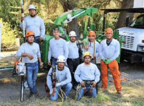 Fred Frey, and the entire Vintage Tree Care team is honored to be featured in the latest issue of The BVHL Magazine!
