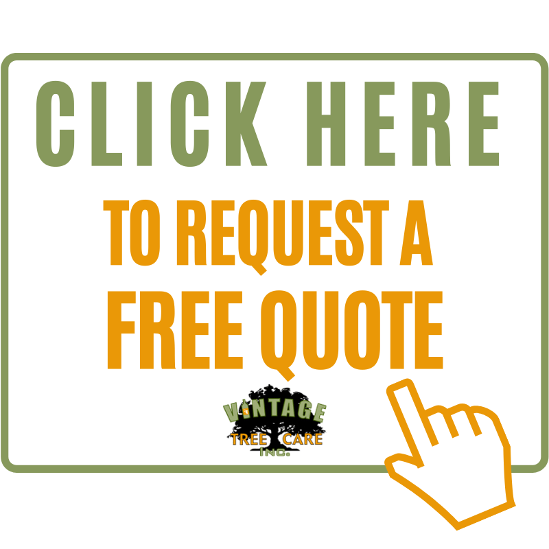 click here to get an Estimate