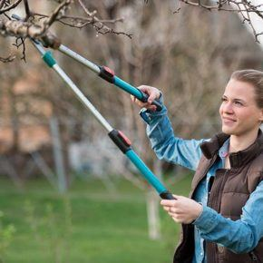 women pruning her trees in springtime for wildfire safety