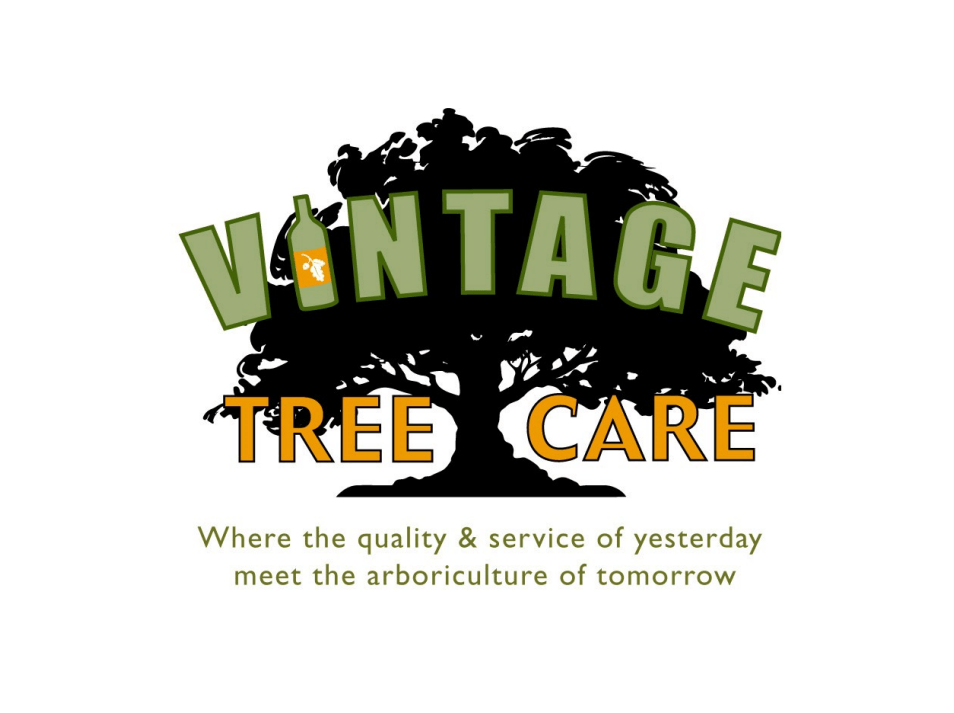 vintage tree care logo click here to request a free quote