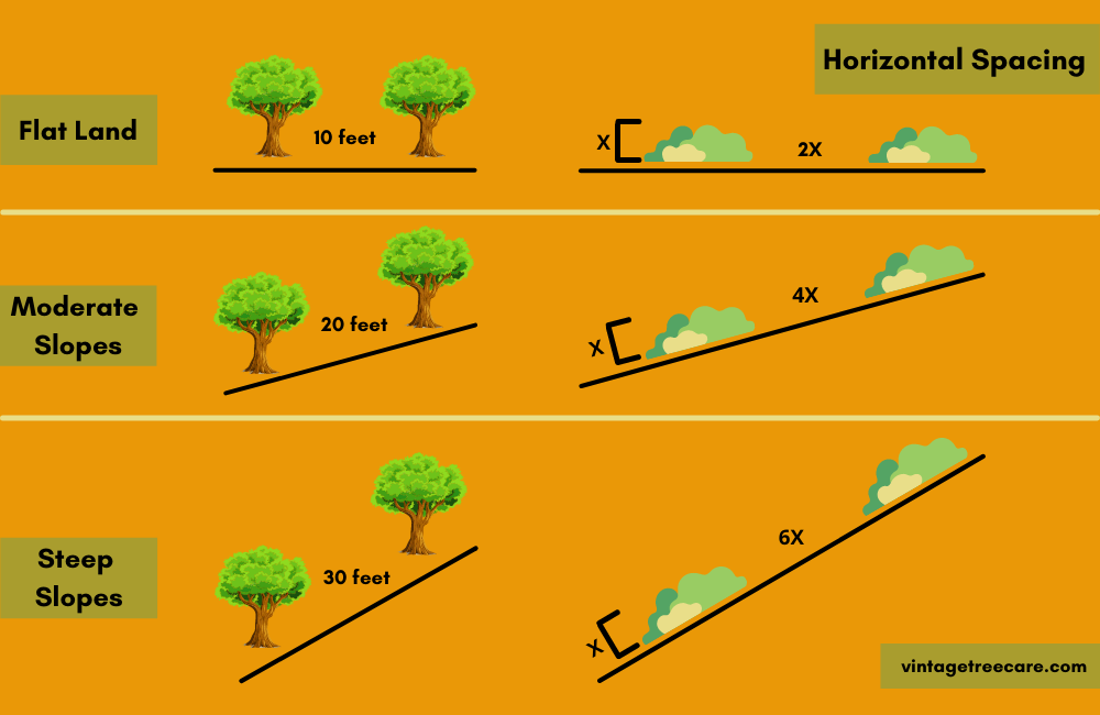 Infrograph on How To Create Horizontal Spacing on Your Property