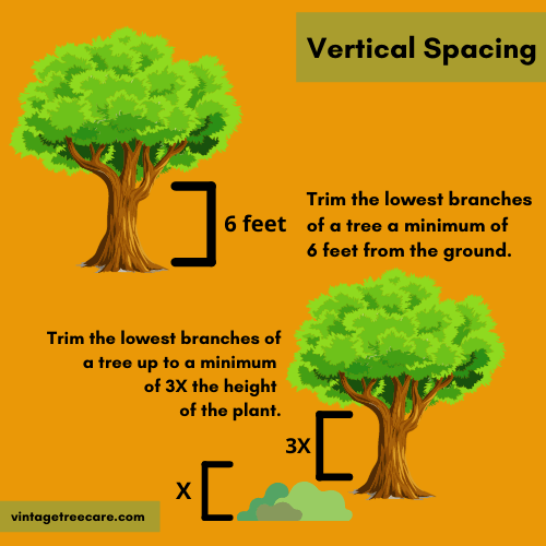 Infrograph on How To Create Vertical Spacing on Your Property